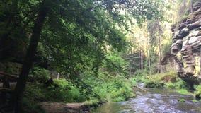 捷克瑞士国立公园、大岩石和河 股票录像