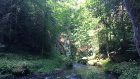 捷克瑞士国立公园、大岩石和河 影视素材