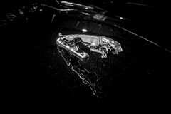 捷豹汽车捷豹汽车敞篷装饰汽车在跃迁的 库存图片
