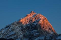 掀动日落转移在Antelao峰顶 免版税库存图片