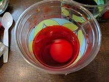 去掉深红复活节彩蛋为正统pascha洗染了 免版税库存照片