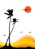 掌上型计算机剪影热带日落的结构树 免版税库存照片