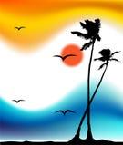 掌上型计算机剪影热带日落的结构树 免版税库存图片