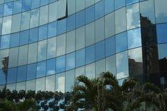掌上型计算机反映结构树 免版税库存照片