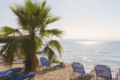 掌上型计算机海运结构树 背景球海滩美好的空的夏天排球 免版税库存照片