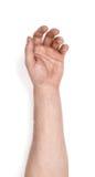 掌握在白色背景隔绝的一个人的手 免版税库存照片