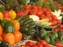 排列五颜六色的蔬菜 免版税库存照片