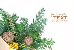 排列圣诞节 免版税图库摄影