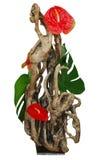 排列漂流木头花卉使用 库存照片