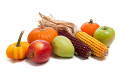 排列秋天果菜类 免版税图库摄影