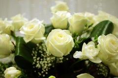 排列空白花的玫瑰 免版税库存图片