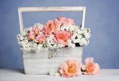 排列美丽花卉 库存照片