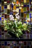 排列花卉兰花 库存照片