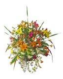 排列花卉大 免版税库存图片