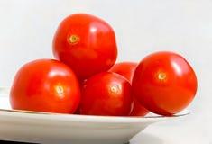 排列蕃茄 免版税库存照片