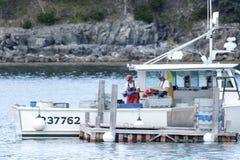 排序他们的天的抓住的一个渔船的捕龙虾的渔夫 免版税图库摄影