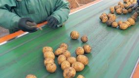 排序在线的农厂工人削皮的土豆,关闭  股票视频