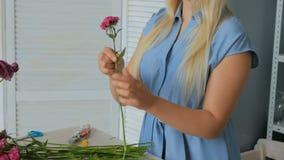 排序花的专业花卉艺术家在演播室 股票视频
