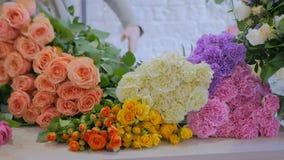 排序花的专业花卉艺术家在演播室 股票录像