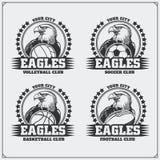 排球、棒球、足球和橄榄球商标和标签 与老鹰的体育俱乐部象征 库存照片