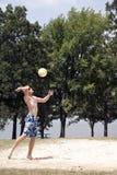 排球 免版税库存照片