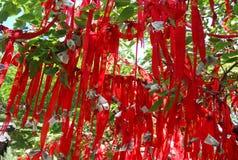 排行红色taishan结构树 免版税库存图片