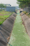 排水管道混凝土路旁 免版税库存照片