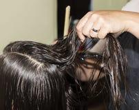 掠过湿头发 免版税库存照片