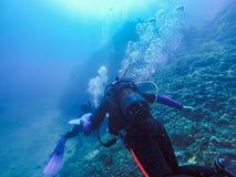 探索水下的风景的轻潜水员 免版税库存图片