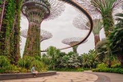 探索滨海湾公园的年轻人在新加坡 库存图片