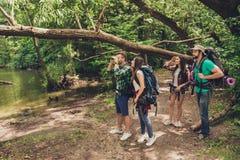 探索,研究和远征概念 四个游人在狂放的春天木头的,人河附近在步行看 免版税库存照片