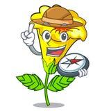探险家在动画片罐的黄蔓花 库存例证