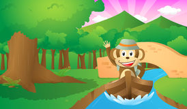 探险家猴子在森林里 免版税库存照片