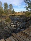 探索在kamloops原野远足期间的风景 库存图片