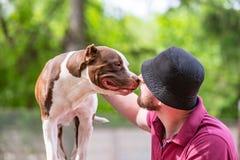 接受亲吻的宠物所有者从他的爱犬,爱恋的富感情的债券舔 免版税库存图片