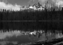 接合的反射在圆的湖 免版税库存照片