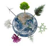 接地与抽象树的地球eco概念的 图库摄影
