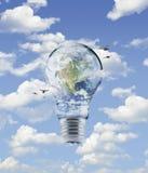 接地在电灯泡的地球与在蓝天背景, Ele的鸟 免版税库存照片