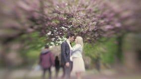 接触她的男朋友的年轻白肤金发的女孩在鼻子亲吻他,然后看  城市在春天 画象 春天…上升了叶子,自然本底 股票视频