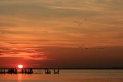 接触特拉华河的太阳 库存图片