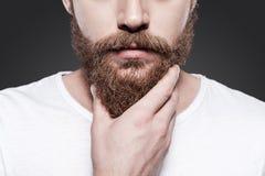 接触他完善的胡子 免版税库存照片