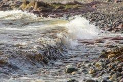 接踵而来的波浪,圣新娘的,纽芬兰 免版税库存图片
