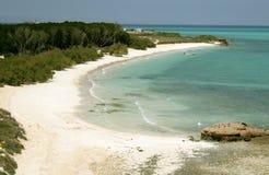 接近吉布提的海岛 库存照片