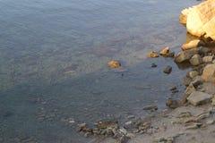 接近海 库存照片