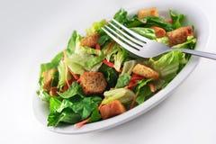 接近的叉子通用沙拉 免版税库存图片