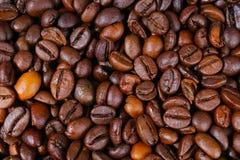 接近的咖啡水平的纹理 烤咖啡豆当背景墙纸 美丽的其中任一的阿拉伯咖啡真正的cofee豆例证 免版税库存照片
