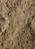 接近的土壤 免版税库存图片