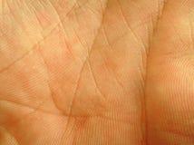 接近的掌上型计算机皮肤 免版税库存图片