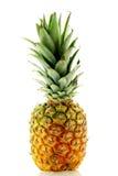 接近的新鲜的菠萝成熟射击 免版税库存图片