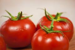 接近的新鲜的蕃茄 免版税库存图片